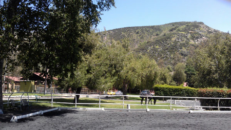 Regal equestrian dressage susann regalmuto usdf for 12651 little tujunga canyon lake view terrace ca 91342